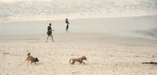 Carmel Beach-12=FBBblogpost12-18-15