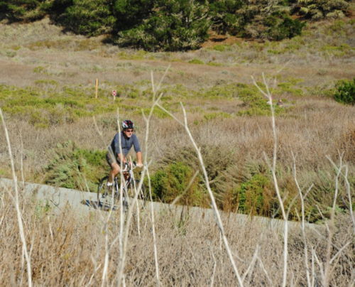 Point Lobos-87_FBB_2-25-16