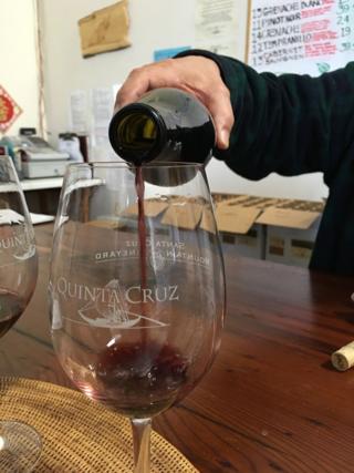 Exploring_Santa_Cruz_3-3-16_28_wine
