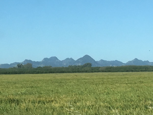 SutterButtes from Highway 70