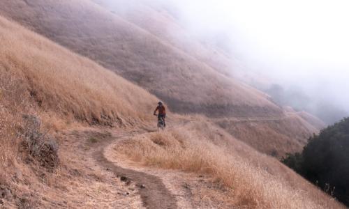 Mountain Biker on Bay Area Ridge Trail in Russian Ridge OSP