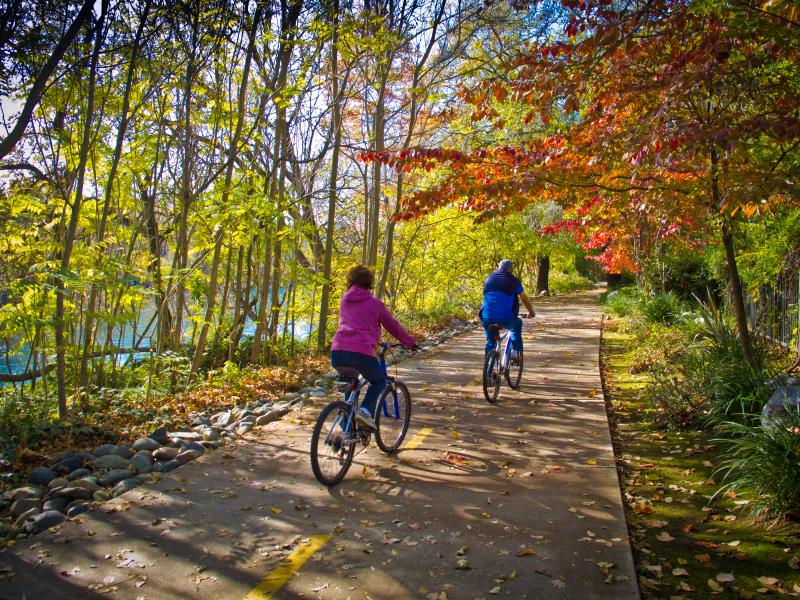 Fall Color Sacrmento River Trail 2